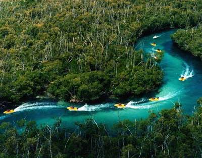 Jungle Boat Tour Costa Rica